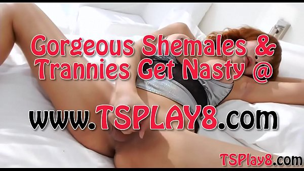 Shemales, Thai shemale, Thai big tits, Shemale solo