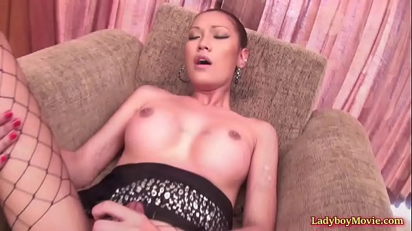 Asian shemale, Tranny asian, Thai ladyboy, Thai tranny