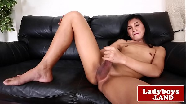 Tranny asian, Thai ladyboy, Thai tranny, Hard tranny, Tranny hard, Thai shemale