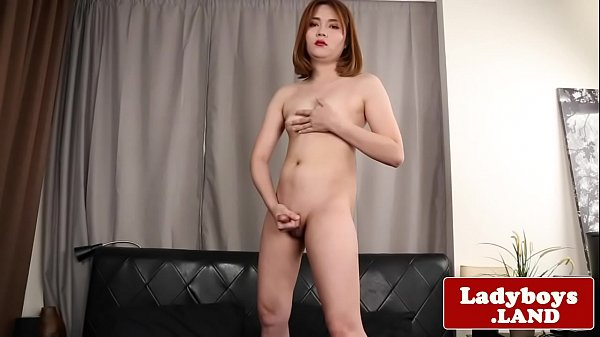 Tranny asian, Thai tranny, Panty, Thai shemale, Ladyboy solo, Asian tranny