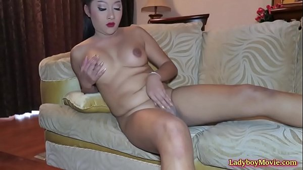 Tranny asian, Fat shemale, Thai tranny, Tranny fat, Thai shemale, Ladyboy thai