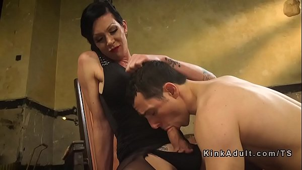 Kink, Shemale fuck guy, Shemale domination, Ladyboy fuck guy, Ass tranny