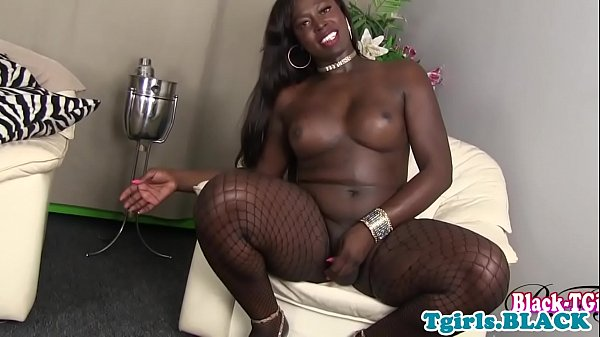 Solo shemale, Jerk, Black tranny